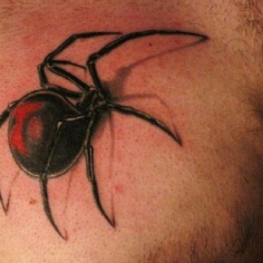 3D Spider Ink Tattoo Miami Designs Pictures