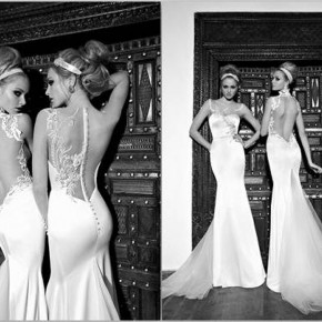 Backless Wedding Dresses Lace1 Pictures