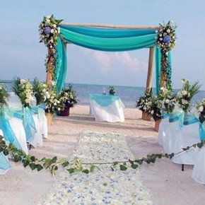 Beach Wedding Ideas 2013 Pictures