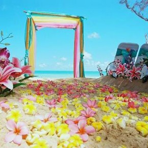 Beach Wedding Ideas Best Pictures