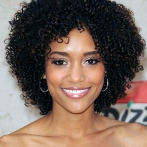 Black Hairstyle For Women 2013 Pictures