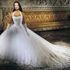 Bridal Dresses Princess Style 2013 Pictures
