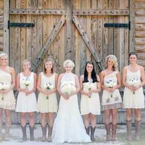 Country Chic Wedding Brdesmaid Dresses 2013 Pictures