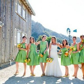 Country Wedding Bridesmaid Dress Ideas Images Pictures