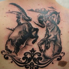 Design Tattoos Capricorn Vs Aries Pictures