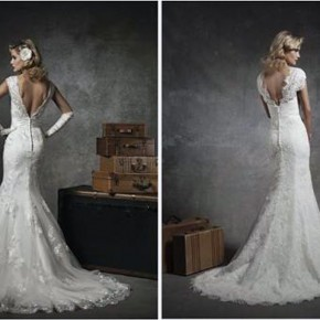 Lace Low Back Wedding Dress 2013 Pictures