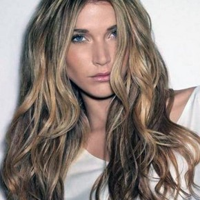 Light Brown Hair With Highlights Best Pictures