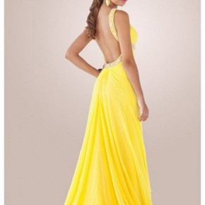 Long Prom Dresses Open Back 2013 Pictures
