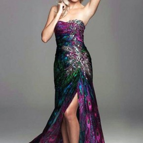 Peacock Print Prom Dress Images Pictures