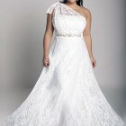 Plus Size Elegant Dresses Ideas Pictures