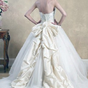 Princess Wedding Dress With Bow Pictures