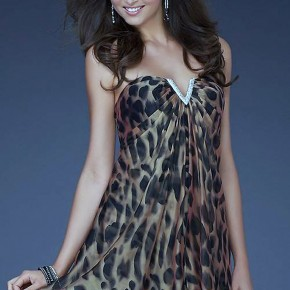 Short Formal Cheetah Dress Ideas Pictures