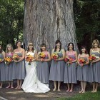 Silver Bridesmaid Dresses Under 100 Pictures