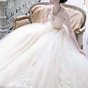 Simple Cinderella Wedding Dress 2013 Pictures