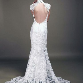 Wedding Backless Dress 2013 Pictures