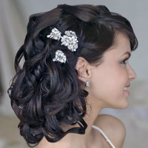 Wedding Hairstyles Shoulder Length Hair Veil Pictures