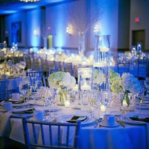Wedding Reception Ideas Blue Pictures