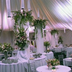 Wedding Reception Ideas Purple Pictures