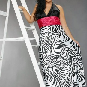 Zebra Dresses For Teenagers Ideas Pictures