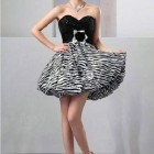 Zebra Print Cocktail Dress Collection Pictures