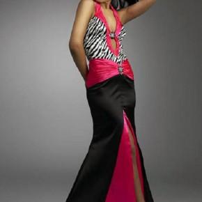 Zebra Prom Dresses Pictures